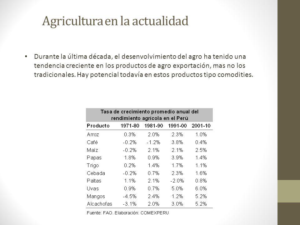 Agricultura en la actualidad Durante la última década, el desenvolvimiento del agro ha tenido una tendencia creciente en los productos de agro exporta
