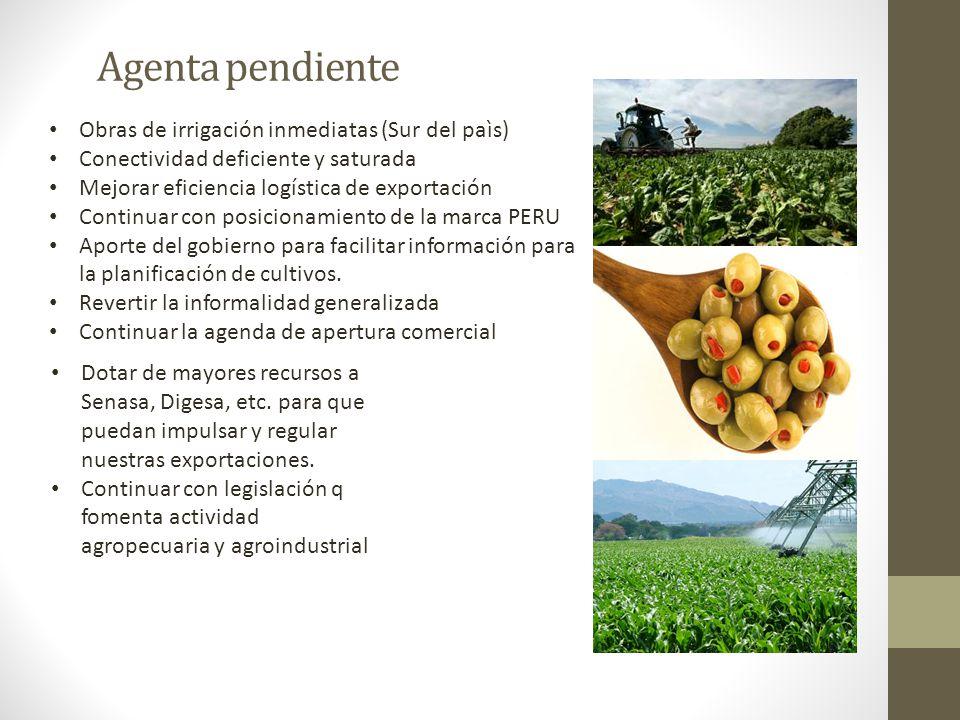 Agenta pendiente Obras de irrigación inmediatas (Sur del paìs) Conectividad deficiente y saturada Mejorar eficiencia logística de exportación Continua