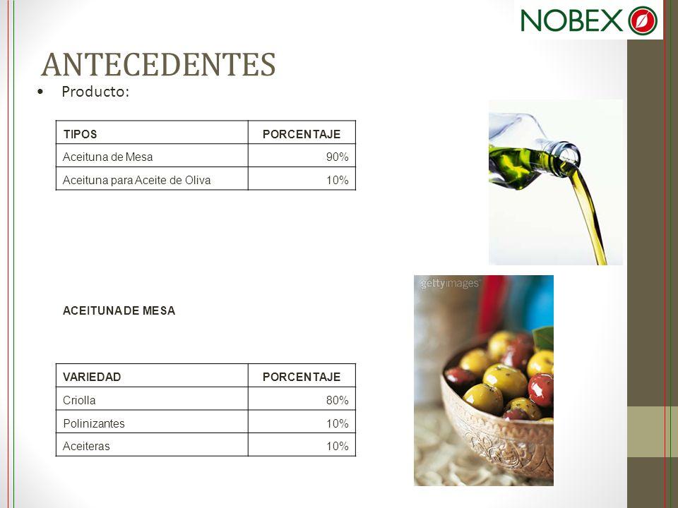 ANTECEDENTES Producto: TIPOSPORCENTAJE Aceituna de Mesa90% Aceituna para Aceite de Oliva10% ACEITUNA DE MESA VARIEDADPORCENTAJE Criolla80% Polinizante