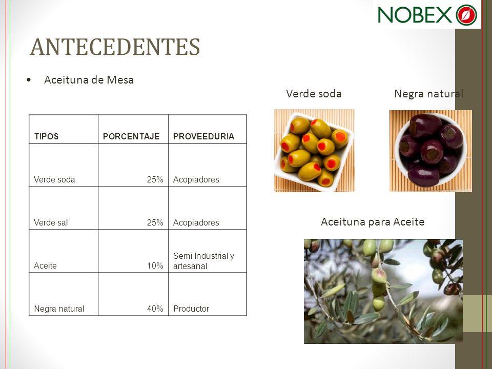 ANTECEDENTES Aceituna de Mesa Verde soda Aceituna para Aceite TIPOSPORCENTAJEPROVEEDURIA Verde soda25%Acopiadores Verde sal25%Acopiadores Aceite10% Se