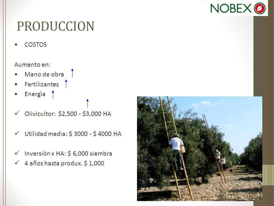 PRODUCCION COSTOS Aumento en: Mano de obra Fertilizantes Energìa Olivicultor: $2,500 - $3,000 HA Utilidad media: $ 3000 - $ 4000 HA Inversiòn x HA: $