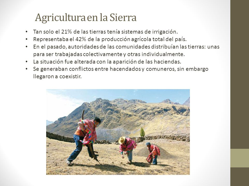 Agricultura en la Sierra Tan solo el 21% de las tierras tenía sistemas de irrigación. Representaba el 42% de la producción agrícola total del país. En