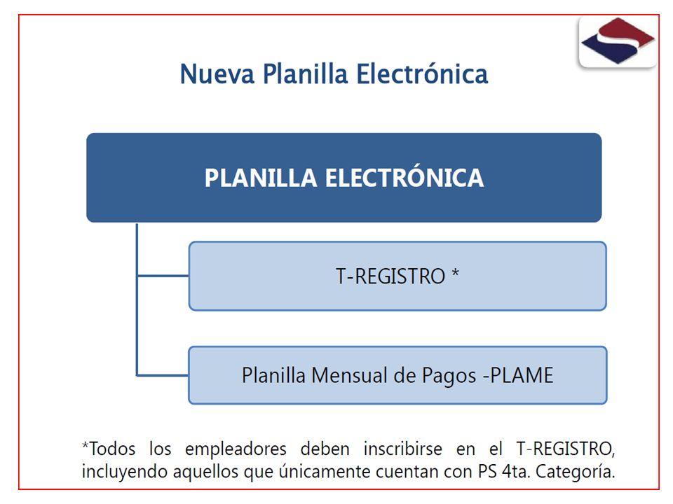 Carga Inicial al T-REGISTRO La SUNAT realizará la carga inicial de Empleadores, Trabajadores, Pensionistas, Personal en formación laboral y personal de terceros.