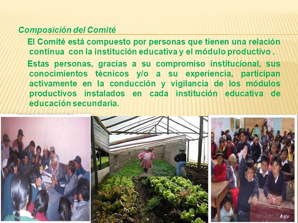 Composición del Comité El Comité está compuesto por personas que tienen una relación continua con la institución educativa y el módulo productivo.