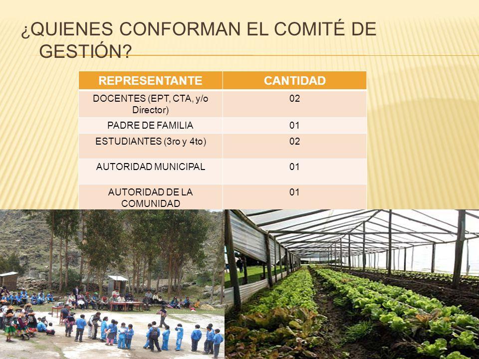 ¿ QUIENES CONFORMAN EL COMITÉ DE GESTIÓN.