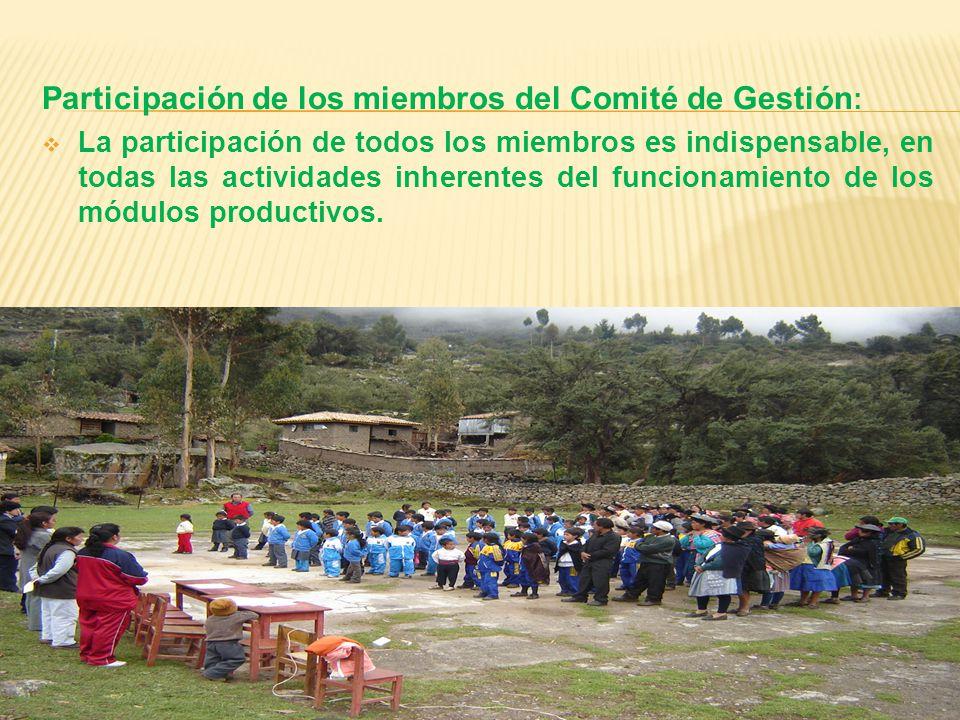 Participación de los miembros del Comité de Gestión : La participación de todos los miembros es indispensable, en todas las actividades inherentes del funcionamiento de los módulos productivos.