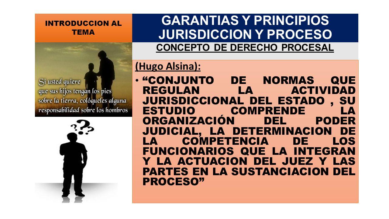 PRINCIPIO DE PUBLICIDAD INTERNO CORRESPONDE A LOS SUJETOS DEL PROCESO EXTERNO INMEDIATA * INFORMACION PERSONAL DE UN TERCERO MEDIATA * INFORMACION A TRAVES DE UN MEDIO NIVELES DE ACCESO GARANTIAS Y PRINCIPIOS JURISDICCION Y PROCESO PRINCIPIOS PROCESALES FUNDAMENTALES