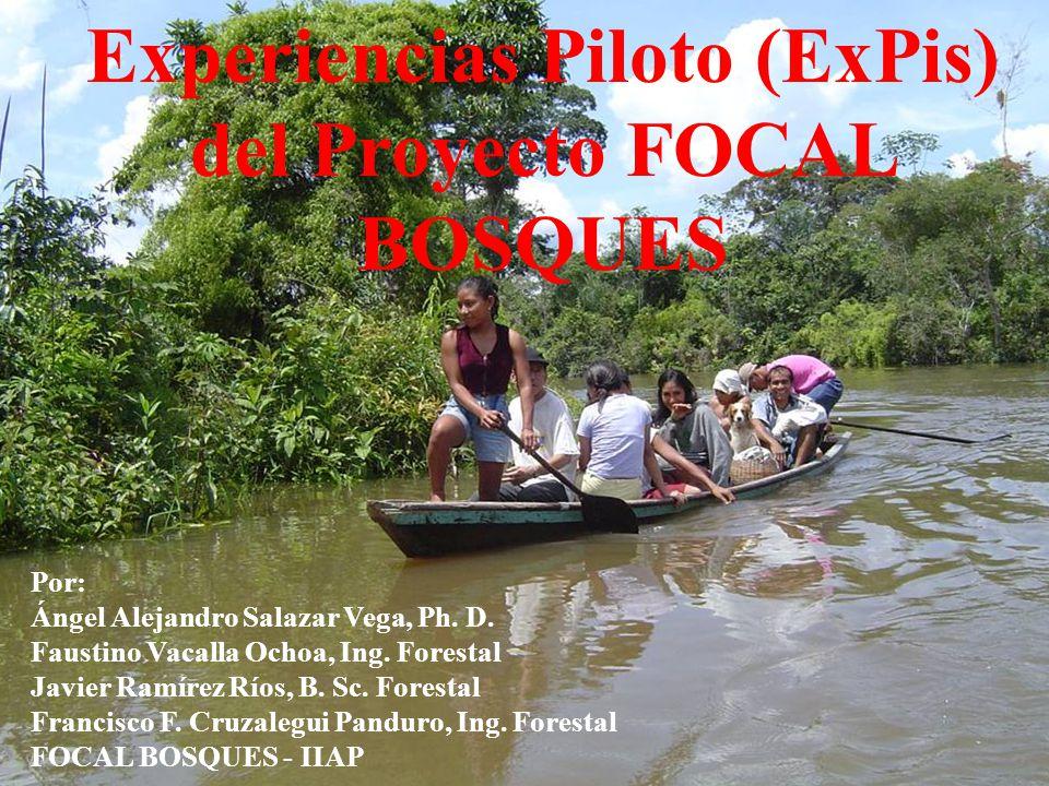 Experiencias Piloto (ExPis) del Proyecto FOCAL BOSQUES Por: Ángel Alejandro Salazar Vega, Ph. D. Faustino Vacalla Ochoa, Ing. Forestal Javier Ramírez