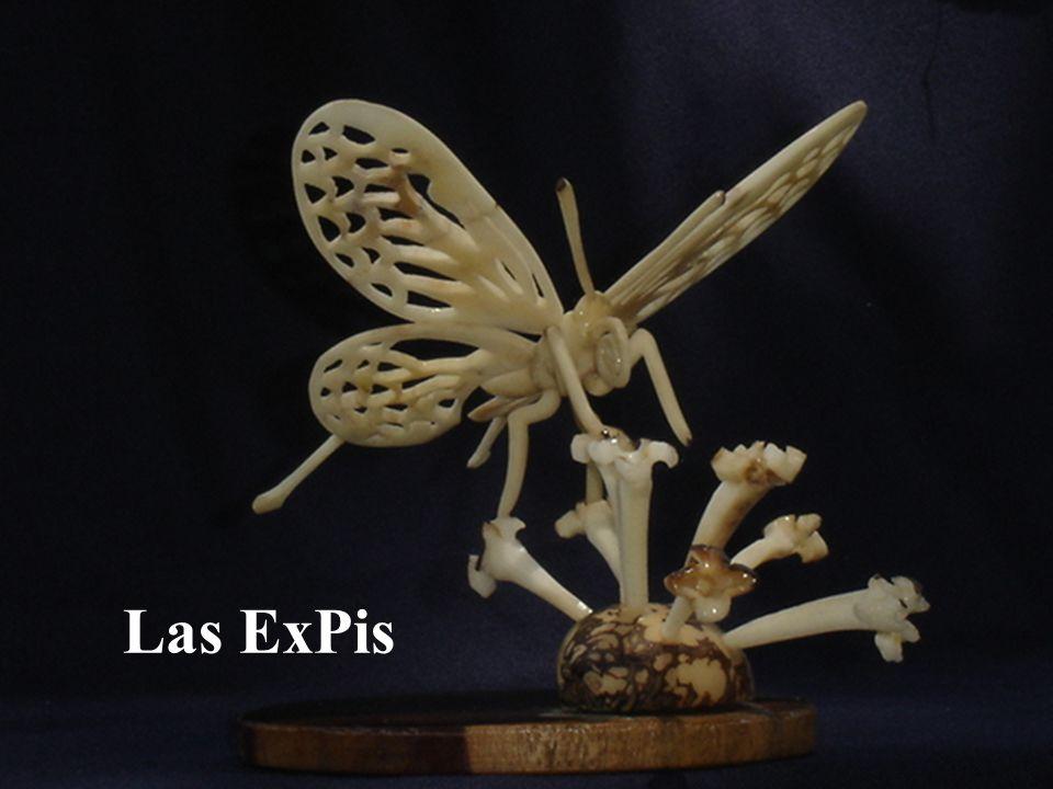 Las ExPis
