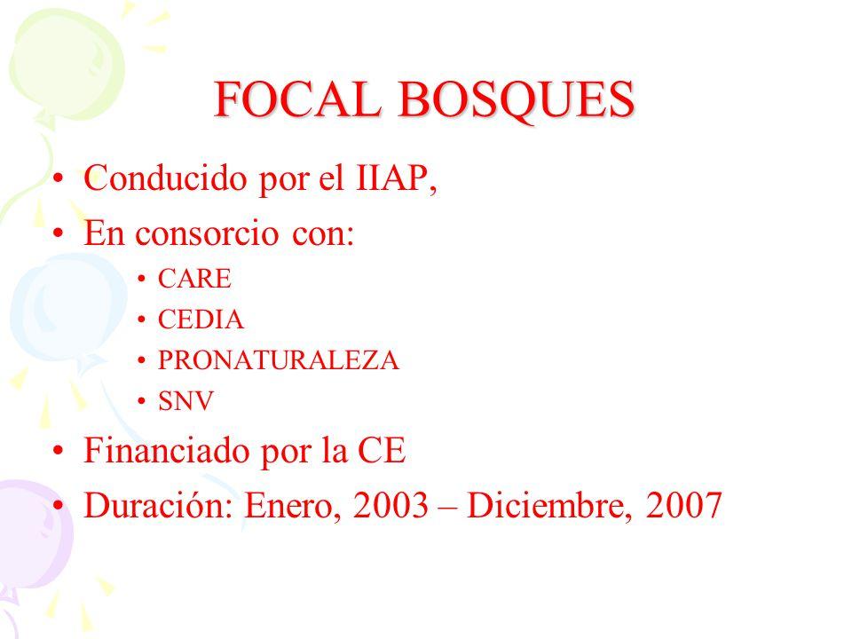FOCAL BOSQUES Conducido por el IIAP, En consorcio con: CARE CEDIA PRONATURALEZA SNV Financiado por la CE Duración: Enero, 2003 – Diciembre, 2007