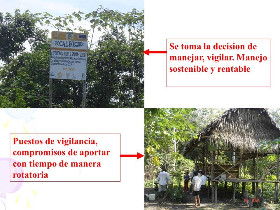 Se toma la decision de manejar, vigilar. Manejo sostenible y rentable Puestos de vigilancia, compromisos de aportar con tiempo de manera rotatoria
