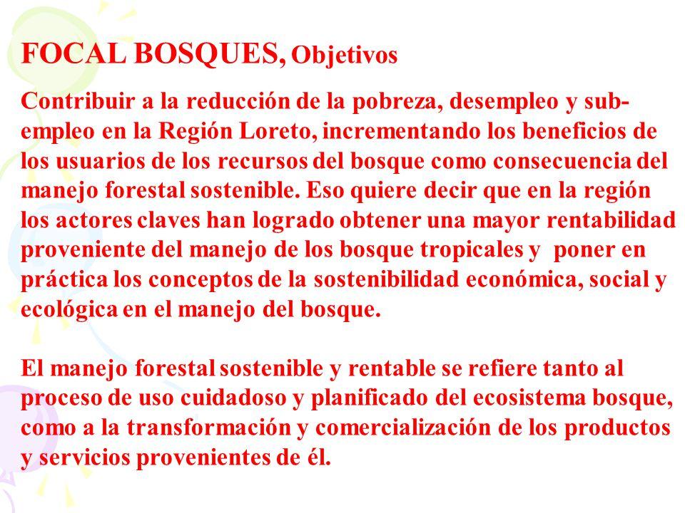 FOCAL BOSQUES, Objetivos Contribuir a la reducción de la pobreza, desempleo y sub- empleo en la Región Loreto, incrementando los beneficios de los usu