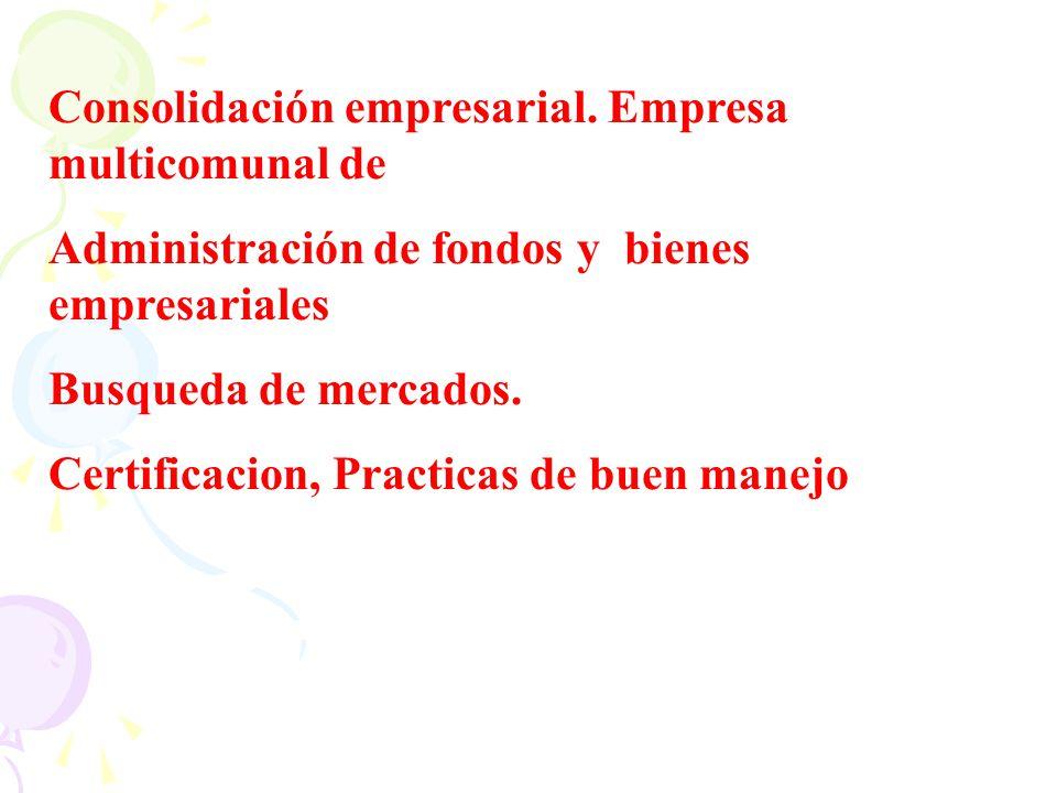 Consolidación empresarial. Empresa multicomunal de Administración de fondos y bienes empresariales Busqueda de mercados. Certificacion, Practicas de b