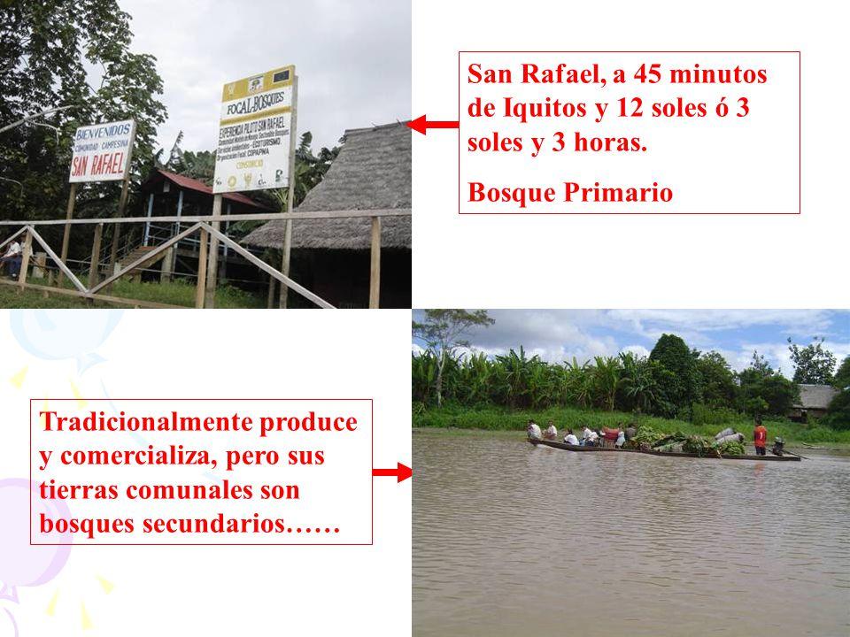 San Rafael, a 45 minutos de Iquitos y 12 soles ó 3 soles y 3 horas. Bosque Primario Tradicionalmente produce y comercializa, pero sus tierras comunale