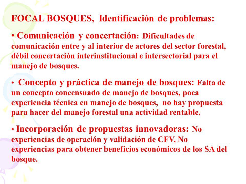 FOCAL BOSQUES, Identificación de problemas: Comunicación y concertación : Dificultades de comunicación entre y al interior de actores del sector fores