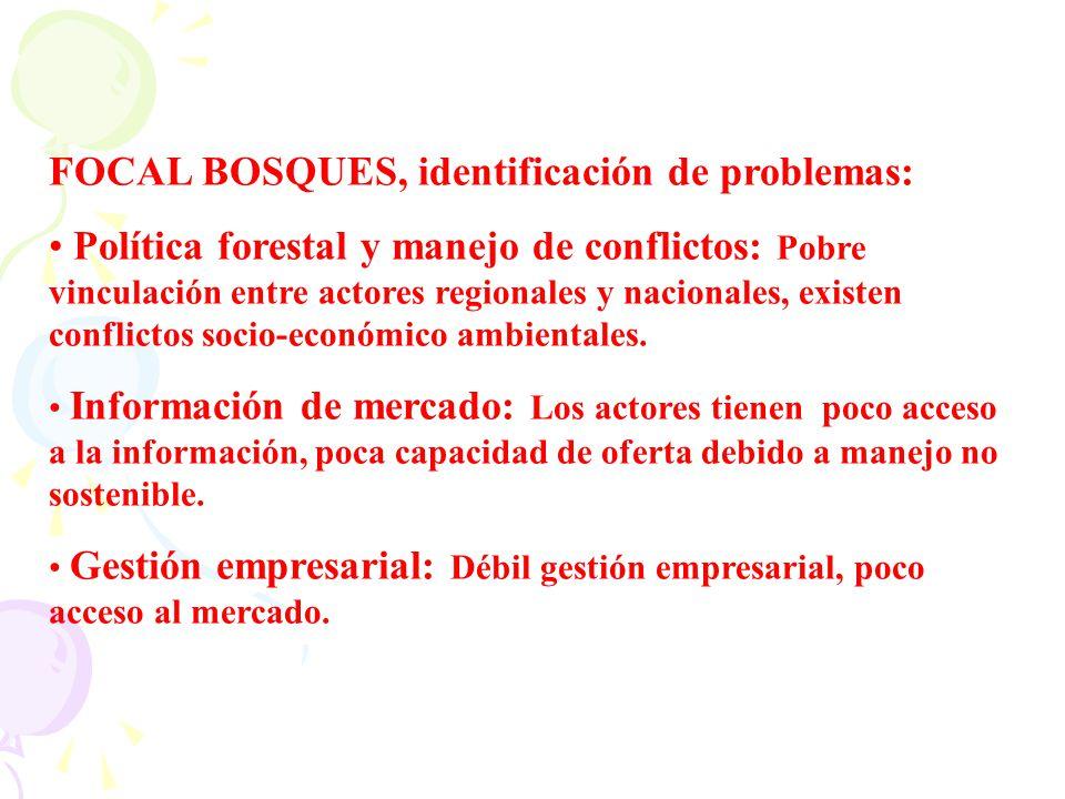 FOCAL BOSQUES, identificación de problemas: Política forestal y manejo de conflictos: Pobre vinculación entre actores regionales y nacionales, existen