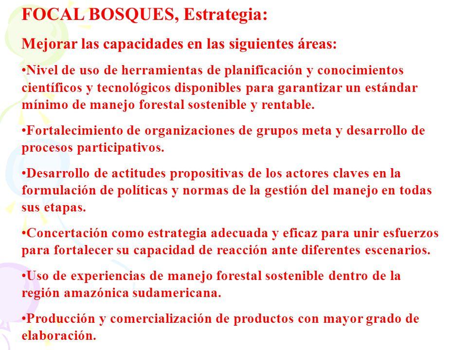 FOCAL BOSQUES, Estrategia: Mejorar las capacidades en las siguientes áreas: Nivel de uso de herramientas de planificación y conocimientos científicos