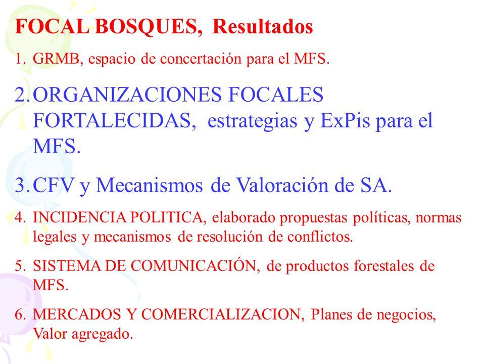 FOCAL BOSQUES, Resultados 1.GRMB, espacio de concertación para el MFS. 2.ORGANIZACIONES FOCALES FORTALECIDAS, estrategias y ExPis para el MFS. 3.CFV y