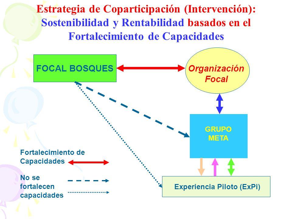 Estrategia de Coparticipación (Intervención): Sostenibilidad y Rentabilidad basados en el Fortalecimiento de Capacidades FOCAL BOSQUESOrganización Foc
