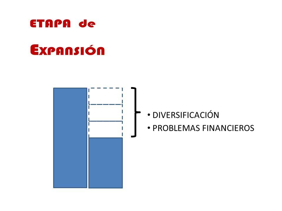 DIVERSIFICACIÓN PROBLEMAS FINANCIEROS