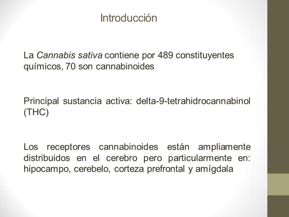 Introducción La Cannabis sativa contiene por 489 constituyentes químicos, 70 son cannabinoides Principal sustancia activa: delta-9-tetrahidrocannabino