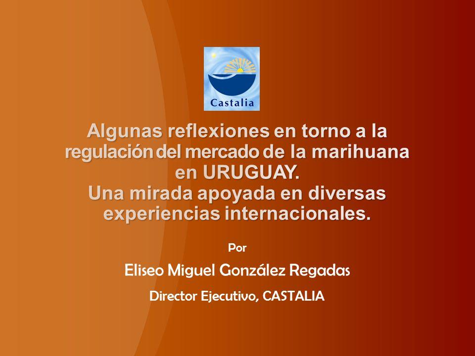 Por Eliseo Miguel González Regadas Director Ejecutivo, CASTALIA