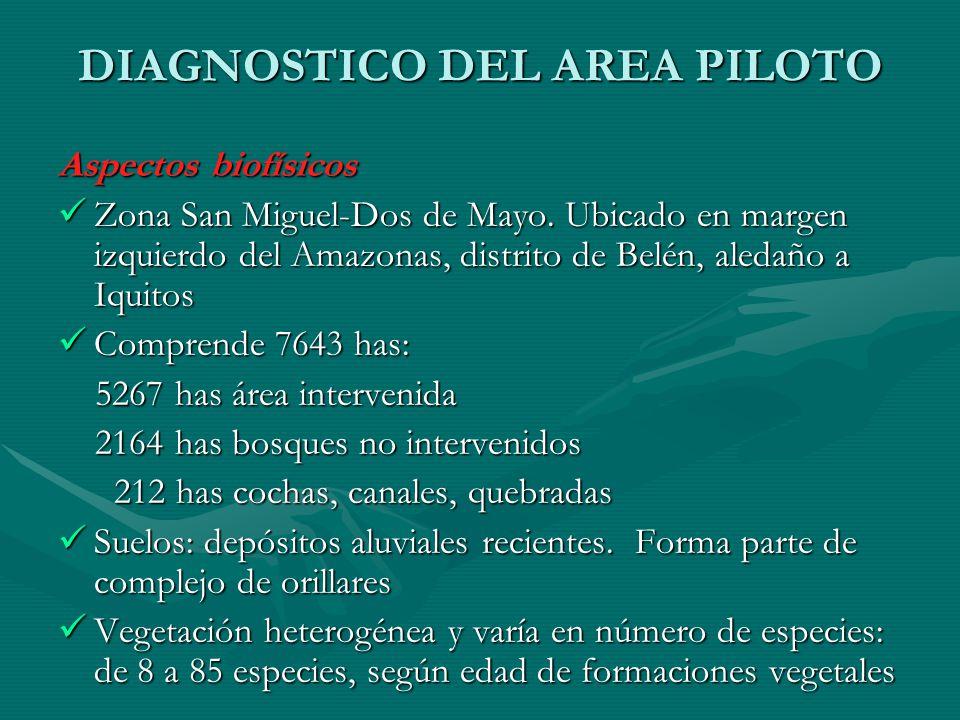 DIAGNOSTICO DEL AREA PILOTO Aspectos biofísicos Zona San Miguel-Dos de Mayo. Ubicado en margen izquierdo del Amazonas, distrito de Belén, aledaño a Iq