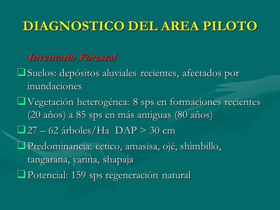 DIAGNOSTICO DEL AREA PILOTO Inventario Forestal Inventario Forestal Suelos: depósitos aluviales recientes, afectados por inundaciones Suelos: depósito