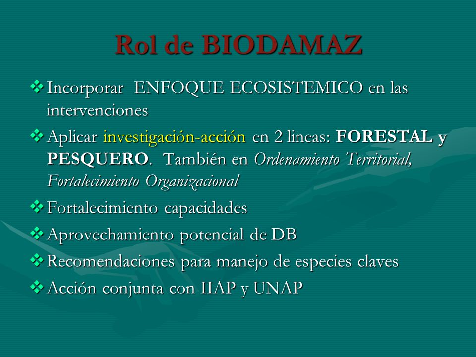 Rol de BIODAMAZ Incorporar ENFOQUE ECOSISTEMICO en las intervenciones Incorporar ENFOQUE ECOSISTEMICO en las intervenciones Aplicar investigación-acci