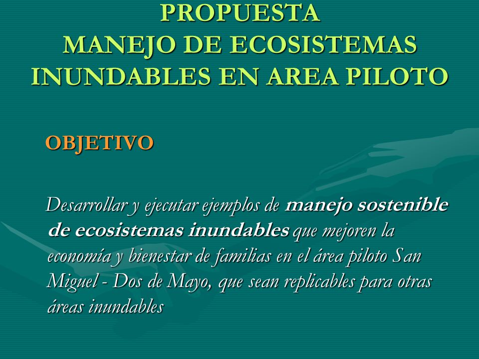 PROPUESTA MANEJO DE ECOSISTEMAS INUNDABLES EN AREA PILOTO OBJETIVO OBJETIVO Desarrollar y ejecutar ejemplos de manejo sostenible de ecosistemas inunda