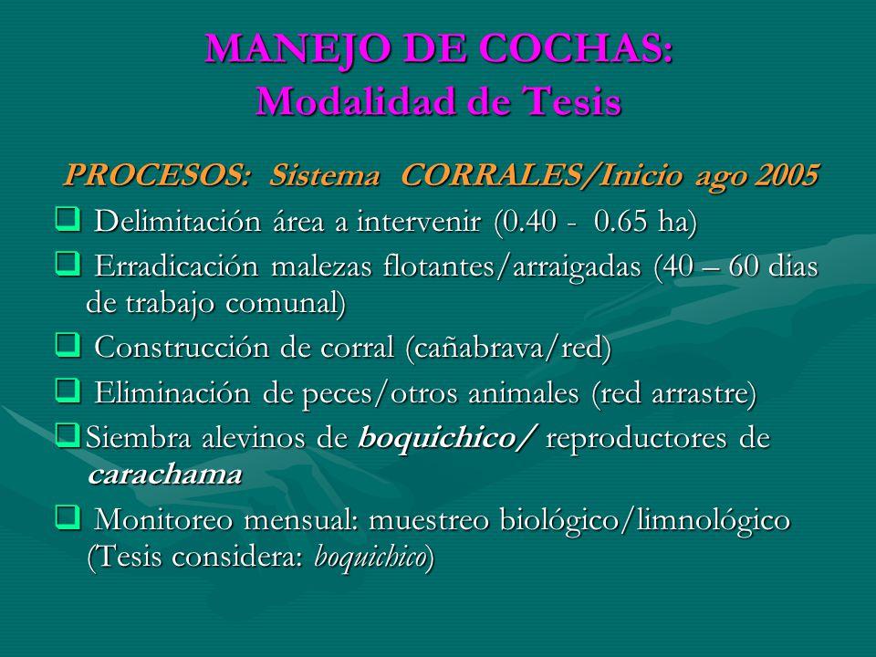 MANEJO DE COCHAS: Modalidad de Tesis PROCESOS: Sistema CORRALES/Inicio ago 2005 PROCESOS: Sistema CORRALES/Inicio ago 2005 Delimitación área a interve
