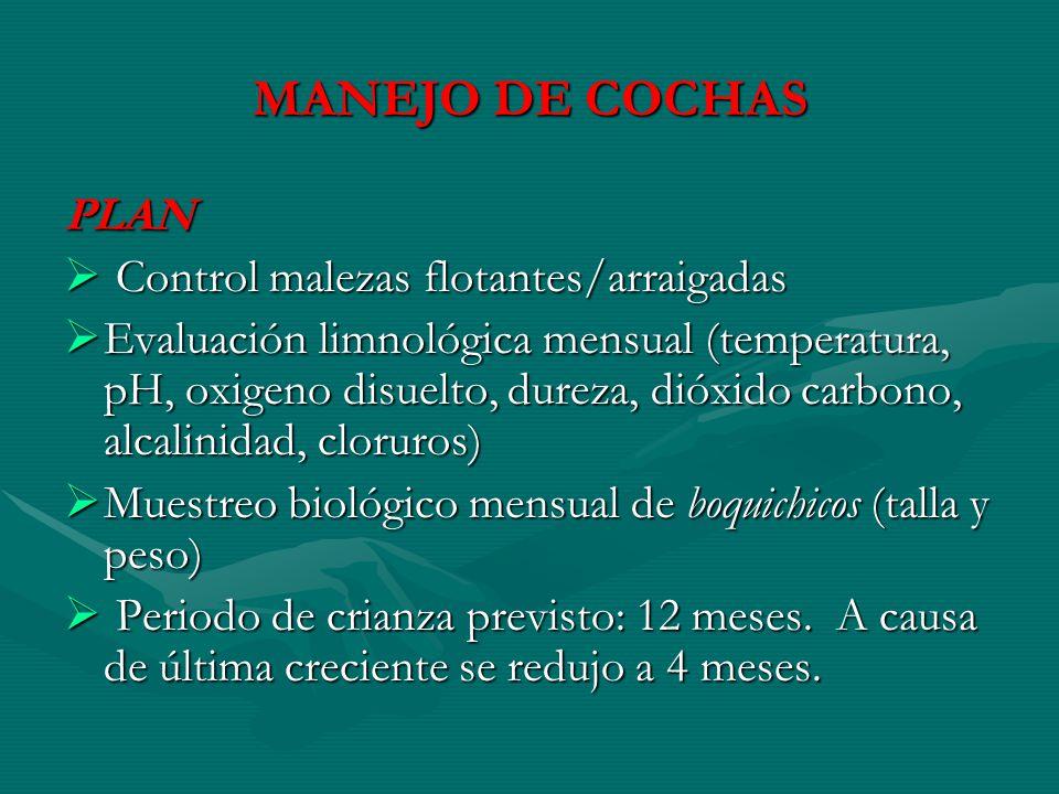 MANEJO DE COCHAS PLAN Control malezas flotantes/arraigadas Control malezas flotantes/arraigadas Evaluación limnológica mensual (temperatura, pH, oxige