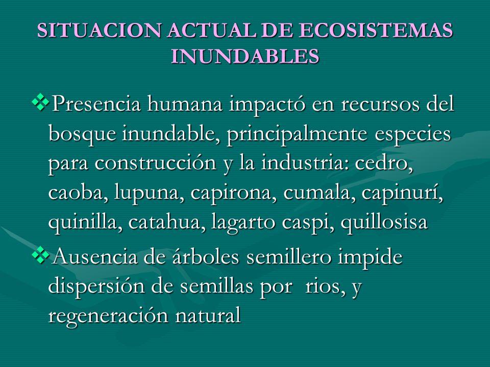 SITUACION ACTUAL DE ECOSISTEMAS INUNDABLES Presencia humana impactó en recursos del bosque inundable, principalmente especies para construcción y la i