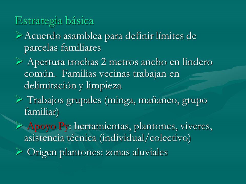 Estrategia básica Acuerdo asamblea para definir límites de parcelas familiares Acuerdo asamblea para definir límites de parcelas familiares Apertura t