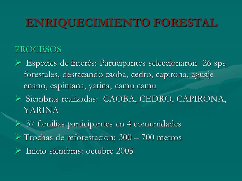 ENRIQUECIMIENTO FORESTAL PROCESOS Especies de interés: Participantes seleccionaron 26 sps forestales, destacando caoba, cedro, capirona, aguaje enano,