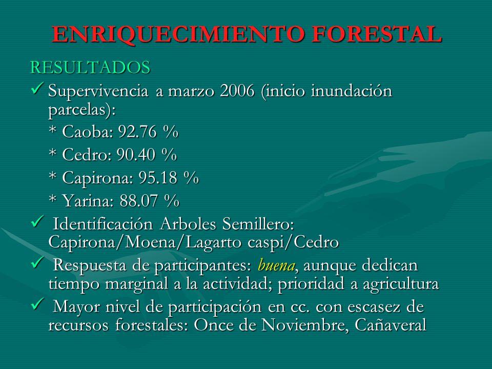 ENRIQUECIMIENTO FORESTAL RESULTADOS Supervivencia a marzo 2006 (inicio inundación parcelas): Supervivencia a marzo 2006 (inicio inundación parcelas):
