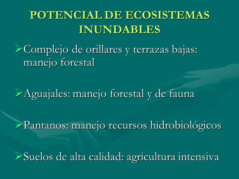 POTENCIAL DE ECOSISTEMAS INUNDABLES Complejo de orillares y terrazas bajas: manejo forestal Complejo de orillares y terrazas bajas: manejo forestal Ag