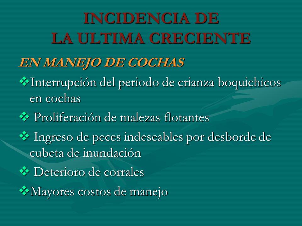 INCIDENCIA DE LA ULTIMA CRECIENTE EN MANEJO DE COCHAS Interrupción del periodo de crianza boquichicos en cochas Interrupción del periodo de crianza bo