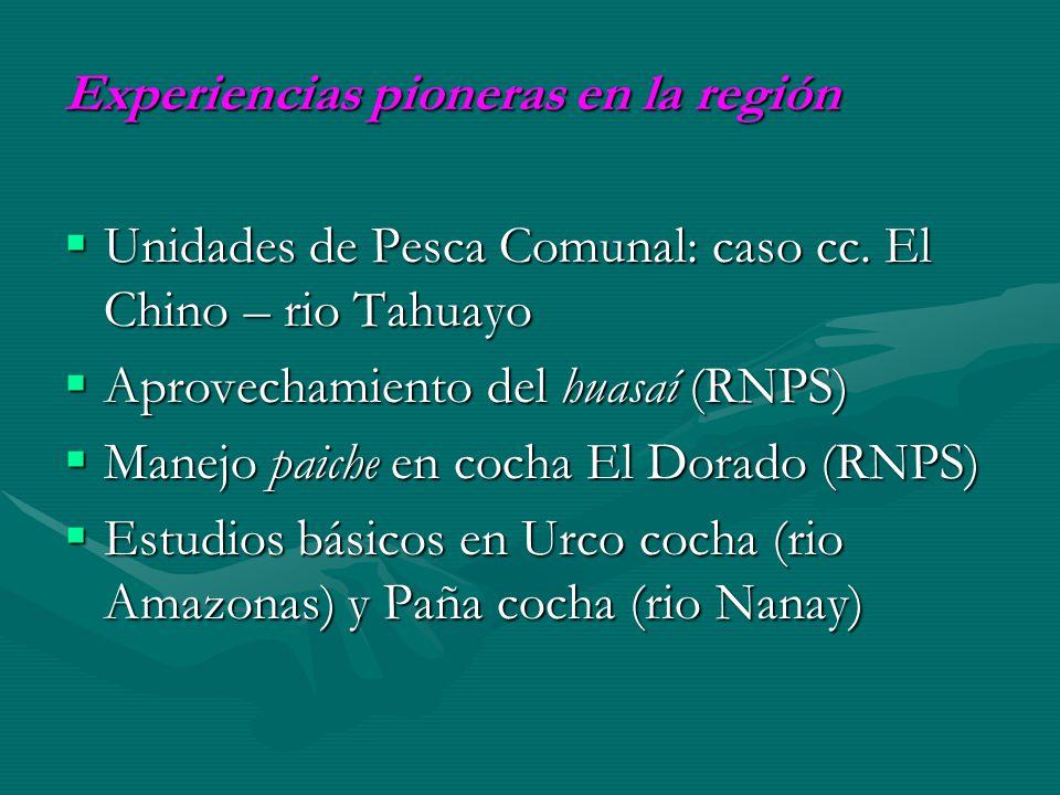 Experiencias pioneras en la región Unidades de Pesca Comunal: caso cc. El Chino – rio Tahuayo Unidades de Pesca Comunal: caso cc. El Chino – rio Tahua