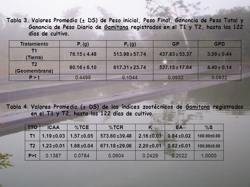 Tabla 3.Valores Promedio (± DS) de Peso inicial, Peso Final, Ganancia de Peso Total y Ganancia de Peso Diario de Gamitana registrados en el T1 y T2, h