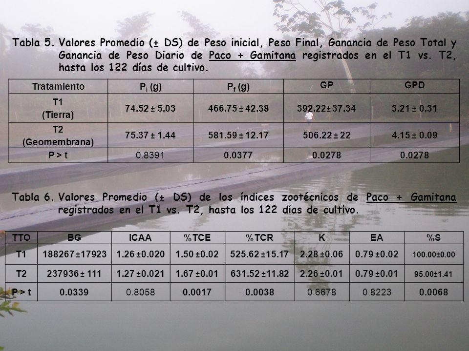 Tabla 5.Valores Promedio (± DS) de Peso inicial, Peso Final, Ganancia de Peso Total y Ganancia de Peso Diario de Paco + Gamitana registrados en el T1