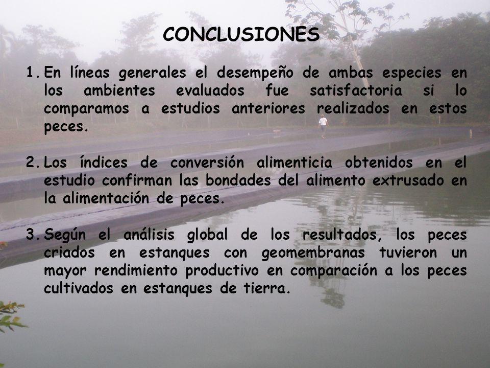 CONCLUSIONES 1.En líneas generales el desempeño de ambas especies en los ambientes evaluados fue satisfactoria si lo comparamos a estudios anteriores
