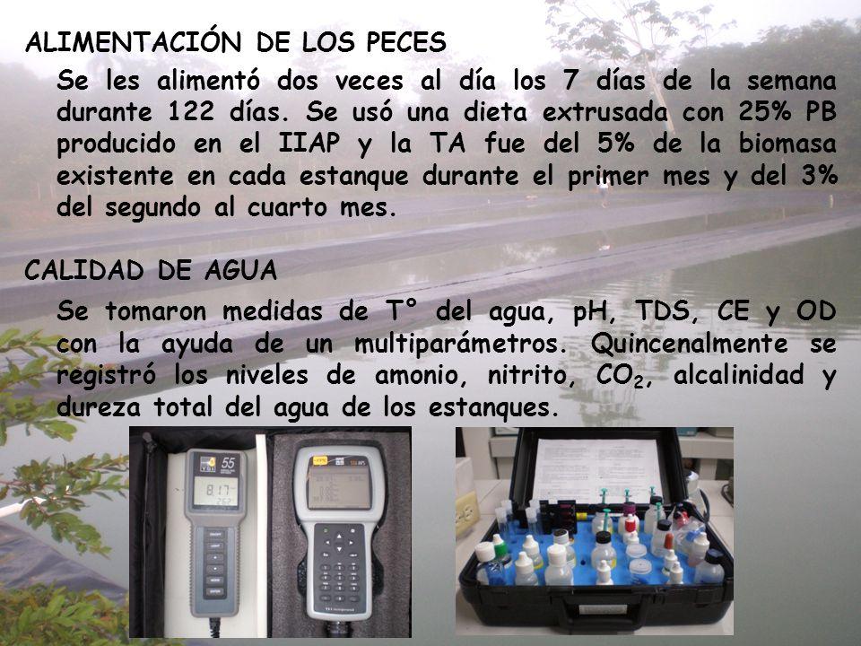 ALIMENTACIÓN DE LOS PECES Se les alimentó dos veces al día los 7 días de la semana durante 122 días. Se usó una dieta extrusada con 25% PB producido e