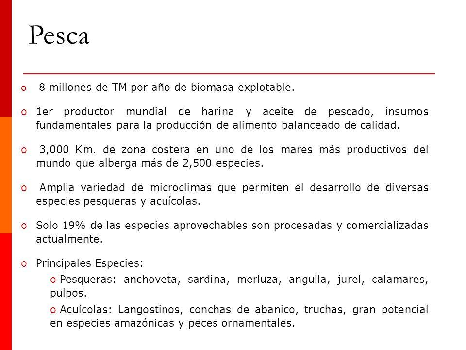 o 8 millones de TM por año de biomasa explotable. o1er productor mundial de harina y aceite de pescado, insumos fundamentales para la producción de al