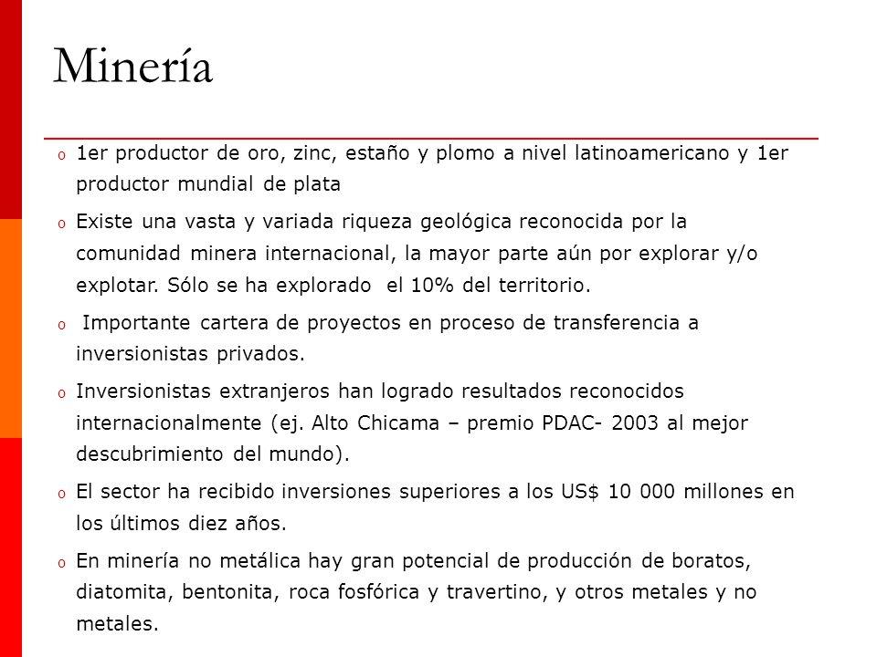 o 1er productor de oro, zinc, estaño y plomo a nivel latinoamericano y 1er productor mundial de plata o Existe una vasta y variada riqueza geológica r
