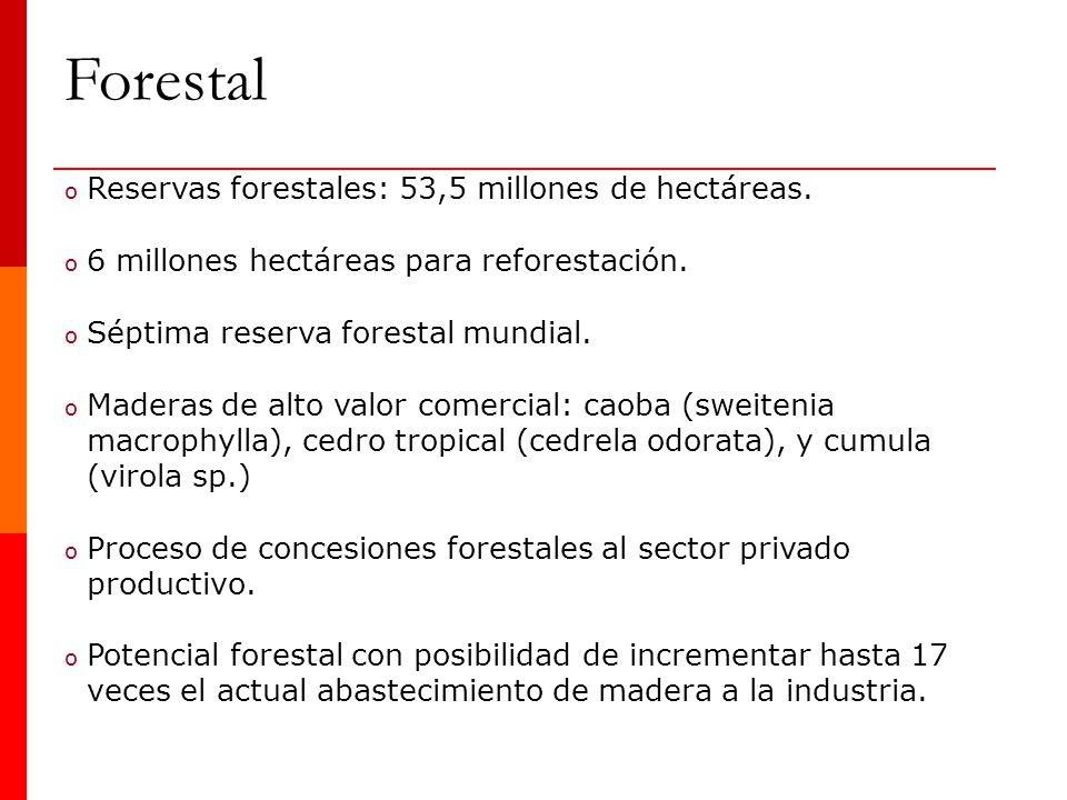 o Reservas forestales: 53,5 millones de hectáreas. o 6 millones hectáreas para reforestación. o Séptima reserva forestal mundial. o Maderas de alto va