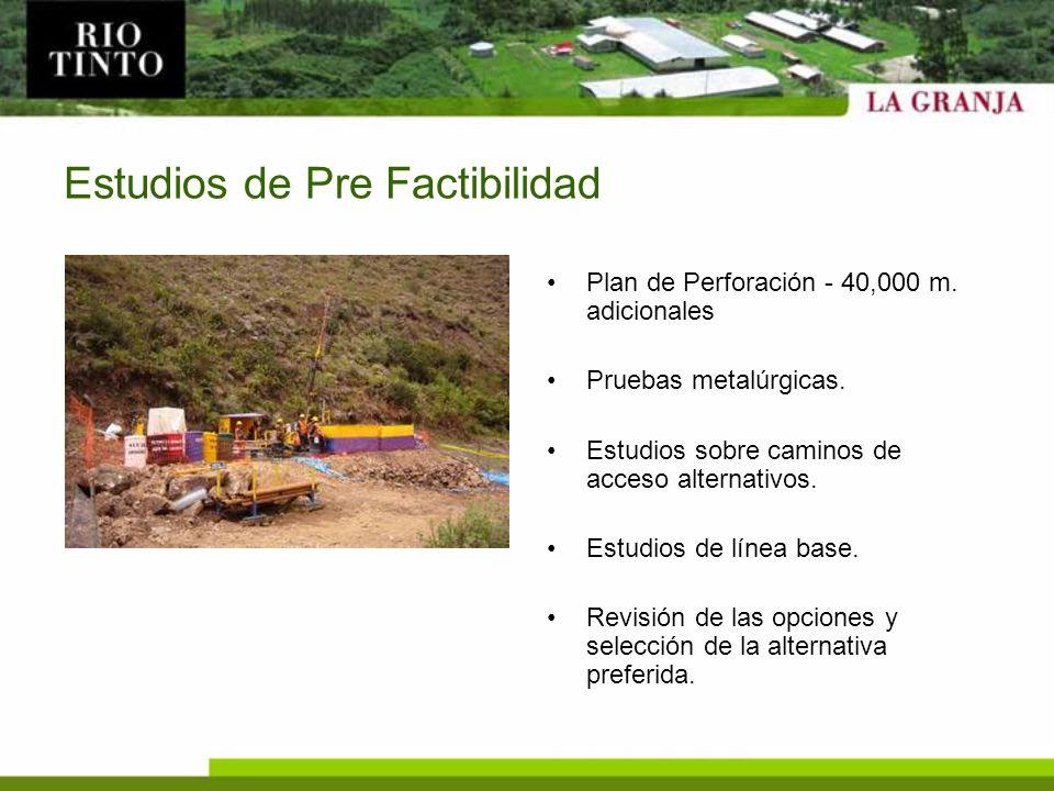 Estudios de Pre Factibilidad Plan de Perforación - 40,000 m. adicionales Pruebas metalúrgicas. Estudios sobre caminos de acceso alternativos. Estudios