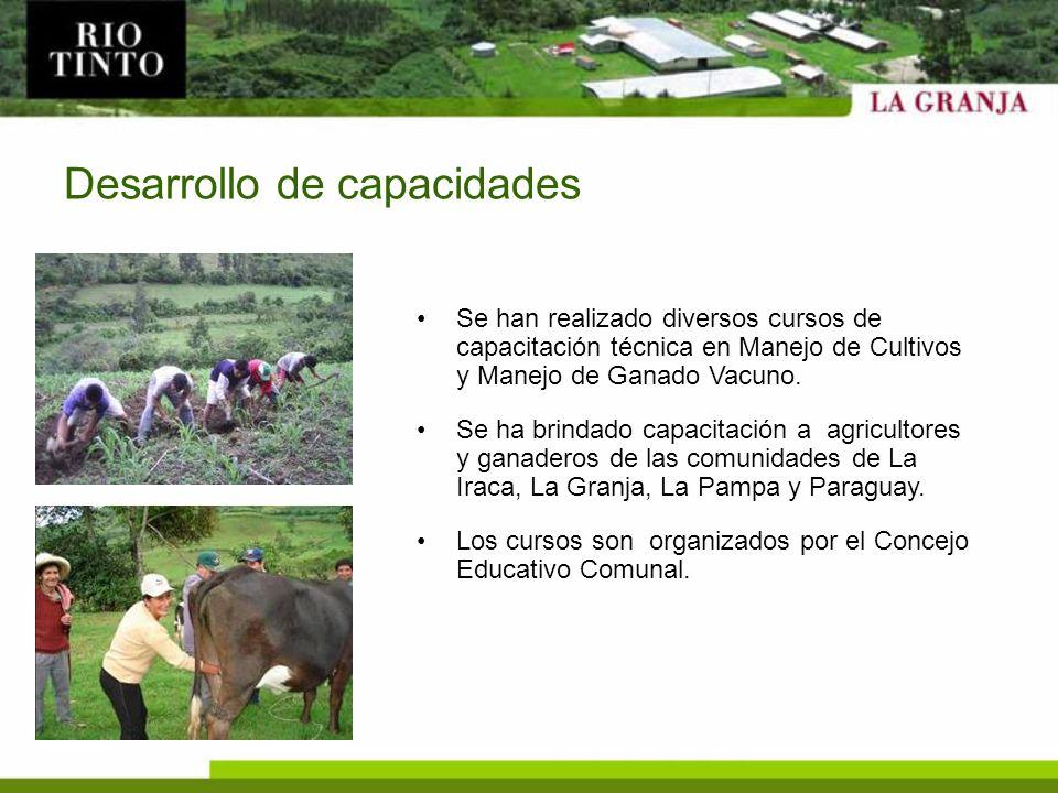 Desarrollo de capacidades Se han realizado diversos cursos de capacitación técnica en Manejo de Cultivos y Manejo de Ganado Vacuno. Se ha brindado cap