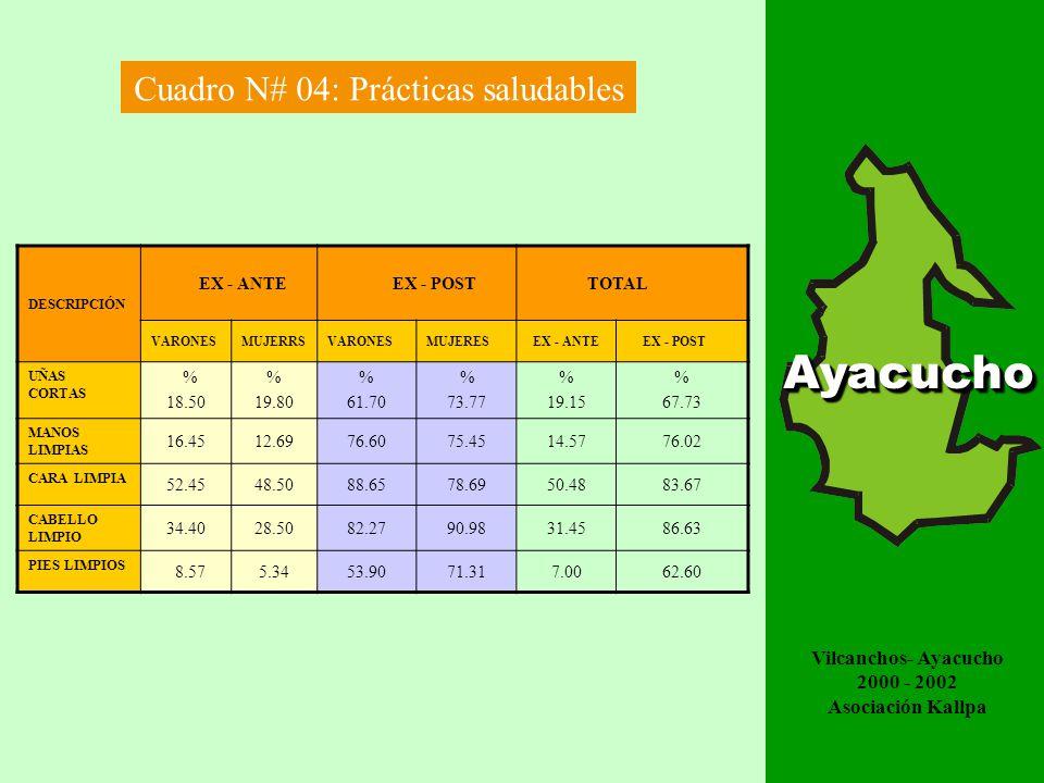 EVALUACIÓN DE IMPACTO AYACUCHOAyacuchoAyacucho Cuadro N# 01 : Enfermedades de piel DESCRIPCIÓN EX - ANTE EX - POST TOTAL VARONESMUJERRSVARONESMUJERES EX - ANTE EX - POST PEDICULOSIS % 17.91 % 53.48 % 9.93 % 11.40 % 71.39 % 21.33 HONGOS EN LA CABEZA 14.9319.385.673.2834.318.95 HONGOS EN LOS PIES 41.3546.1512.7712.3087.525.07 HONGOS EN LAS MANOS 12.7713.114.513.8525.888.36 VERRUGAS 12.037.697.093.2019.7210.39 ACAROSIS 21.2813.935.348.3335.2113.67 IMPÉTIGO O PIODERMITIS 2.995.434.56 8.426.15 DESCRIPCIÓNEX - ANTE EX - POST DIARREAS 20.15 %14.45 % PARASITOSIS 100 %61.21 % Cuadro N# 02 : Enfermedades intestinales Vilcanchos- Ayacucho 2000 - 2002 Asociación Kallpa