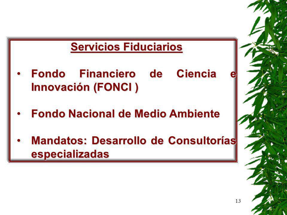 13 Servicios Fiduciarios Fondo Financiero de Ciencia e Innovación (FONCI )Fondo Financiero de Ciencia e Innovación (FONCI ) Fondo Nacional de Medio AmbienteFondo Nacional de Medio Ambiente Mandatos: Desarrollo de Consultorías especializadasMandatos: Desarrollo de Consultorías especializadas